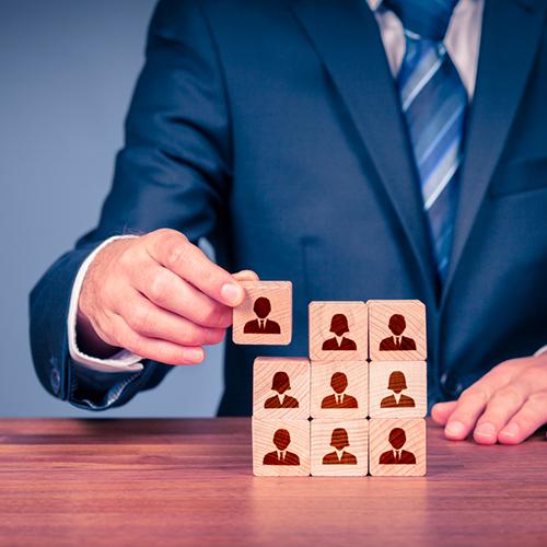 Nos Services d'Audits et de Conseils : RSE et organisationnels